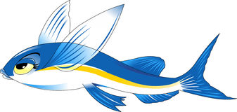 Flying fish Stock Photography