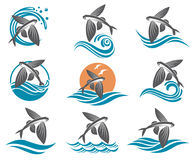 Flying fish illustrations set. Collection of flying fish images with waves Stock Photography