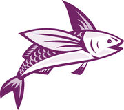 Flying Fish Retro Royalty Free Stock Images