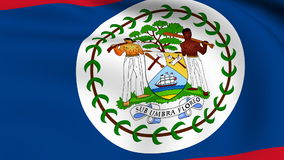 Flying Flag of Belize | LOOPED Stock Photo