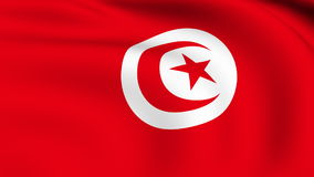 Flying Flag of TUNISIA | LOOPED stock video