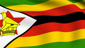 Flying Flag of ZIMBABWE   LOOPED stock video