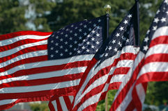 Flying Flags. American Flags flying in breeze stock photos
