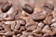 Flying fresh coffee beans Stock Images