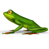 Flying frog Stock Photography
