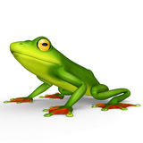 Flying frog Royalty Free Stock Photography