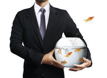 Flying goldfishes from one to another. Business man flying goldfishes from one to another Stock Photos