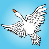 Flying Goose. An image of a goose flying in the sky Royalty Free Stock Photography