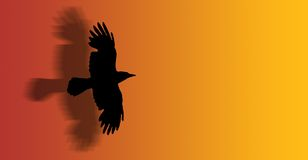 Flying hawk. A hawk flying with open wings - silhouette - illustration stock illustration