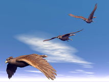 Flying hawks - 3D render. Three hawks flying in the blue sky with little clouds Royalty Free Stock Images