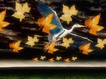 Flying Heron symbolising freedom Stock Photo