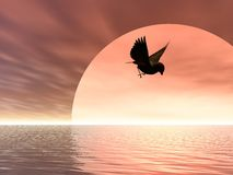 Flying Home. Illustrated song bird flying over the sea at sunrise Stock Photo