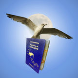 Flying With Honduran Passport Royalty Free Stock Photography