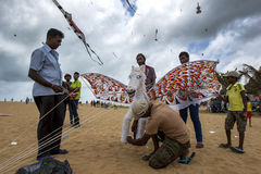 A flying horse prepares for take off from Negombo beach in Sri Lanka. Stock Image
