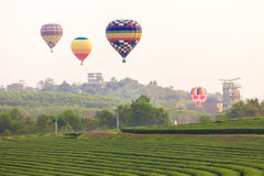 Flying hot air balloon over the mountains and tea plantation Royalty Free Stock Images