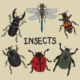 The flying insects set of hand-drawn royalty free illustration