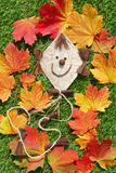 Flying kite and autumn leaves Royalty Free Stock Photo