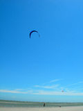 Flying kite on beach Royalty Free Stock Photos