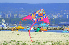 Flying kite on the beach Royalty Free Stock Photo