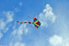 Flying kite in the blue sky Stock Photo