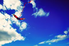 Flying kite blue sky. Kite on a sunny dax Stock Images