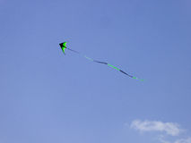 Flying a kite inside Century Park Royalty Free Stock Image