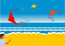 Flying Kites Royalty Free Stock Photo