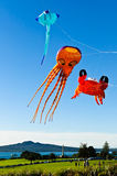 Flying kites Stock Photo