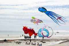 Flying Kites at the Adelaide International Kite Festival. Semaphore, South Australia, Australia - April 15, 2017: People flying and viewing a variety of figure Stock Photos