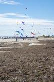 Flying Kites at the Adelaide International Kite Festival Stock Photos