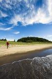 Flying Kites on the beach Stock Photo