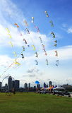 Flying Kites and cityscape. Kites flying in the sky at the marina barrage, the background is singapore cityscape Stock Image