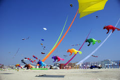 Flying kites festival, Berck-sur-Mer, France, 2011 Royalty Free Stock Image