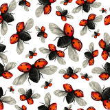 Flying ladybug seamless pattern. Seamless pattern of flying ladybugs spread their wings Stock Images