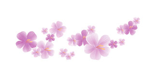 Flying light Purple Violet flowers isolated on white background. Apple-tree flowers. Cherry blossom. Vector EPS 10 cmyk.  vector illustration