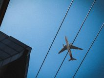 Flying between the lines royalty free stock photos