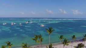 Flying low over the ocean. Against the background of a clear sky. In the foreground trees palms near the water. 4K stock footage