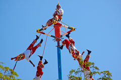 Flying Mayans performing. Royalty Free Stock Image
