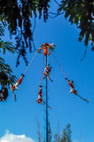 Flying Mayans. Traditional Performence in Tulum Stock Image