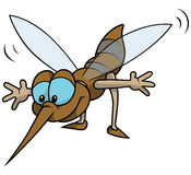 Flying Mosquito Stock Photo