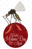Flying Mosquito Holding a Red Label with Malaria Day Commemoration, Vector Illustration Stock Images