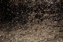 Flying mud splat. Mud flies in all directions as a large object is dropped into a mud filled pit. a big muddy splat Stock Photos