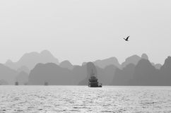 Flying over. A picture taken at sunset in Ha Long Bay Stock Photo