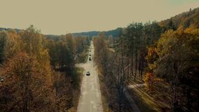 Flying over asphalt road in golden autumn forest. Sigulda, Turaida, Latvia,Turaidas pils stock video
