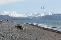 Flying over the bay. Floatplane flying over an Alaskan beach on the Kachemak Bay Royalty Free Stock Photography
