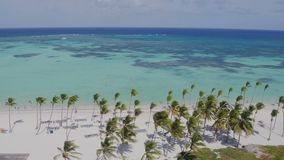 Flying over the beach. Palm trees sun, sea shore stock video footage
