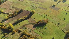 Flying over a beautiful field in the carpathian mountains. Hay harvest. Aerial view of the carpathian mountains in autumn. Small village. Beautiful orange hills stock video footage