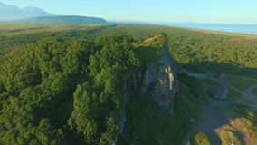 Flying over a beautiful sunny forest trees on the mountain. Aerial camera shot. Landscape panorama stock footage