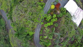 Flying over car along driveway in tropical setting. Video of flying over car along driveway in tropical setting stock footage