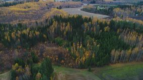Flying over the countryside in Finland, Golden autumn aerial video stock video footage